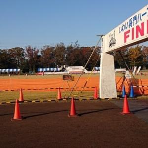 第29回坂東市いわい将門ハーフマラソン大会が晴天の11月10日開催されました