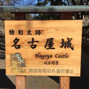 秋の恒例!名古屋城に行ってきた。