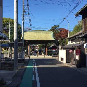 甚目寺から東別院へ、朝市をはしごする。