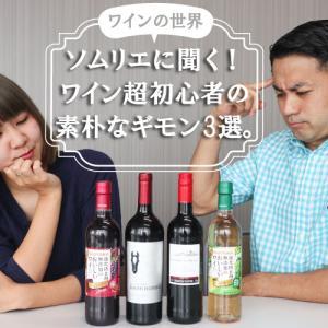 ソムリエに聞く!【ワインの世界】ワイン超初心者の素朴なギモンを解決!!