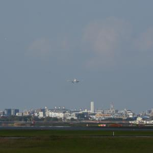 B-1680 中国東方航空 Airbus A321-200<福岡空港>