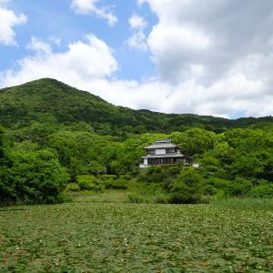 夢郷庵と蓮<佐賀県佐賀市金立公園>