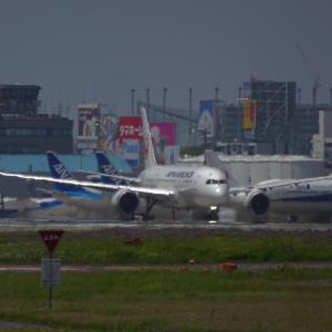 JA846J 日本航空 Boeing 787-8 Dreamliner<福岡空港>