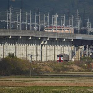 815系 普通列車 N009編成<肥前旭-久留米>