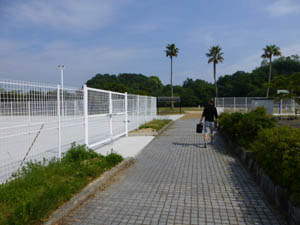 遠征、新居浜黒島公園!!!