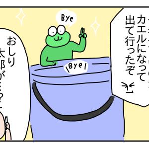 オタマジャクシ②終