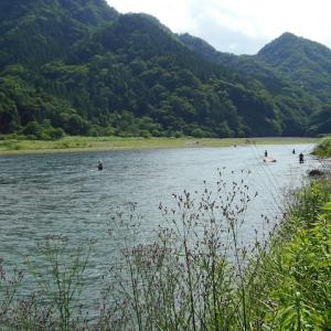 開始5秒で1匹と15分で2匹!だが後が続かない!凄い人が相模湖で釣っていた!