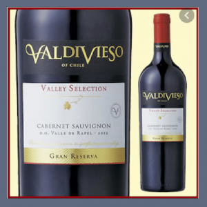 ワインは畑でをモットーに世界で高い評価のチリの名門!ビーニャ・バルディビエソ!