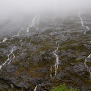 雨が作りし千筋の滝!ミルフォード・サウンドという!ニュージーランド南島!