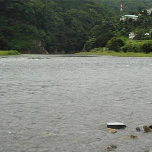 友釣りにはアタリや・囮のシグナルに友釣りの真髄が!梅雨続きで水量が多かった!!