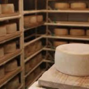国産ナチュラルチーズ!魅力は優しさと物語!グルメを刺激し、消費量は年々増加!!