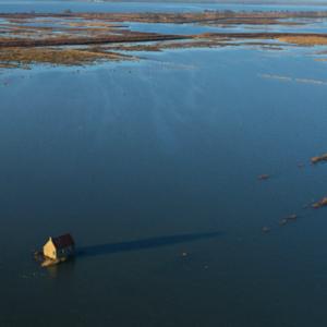 よみがえった干潟!オランダ南部のティンへメーテン島!廃墟となった家がぽつんと!