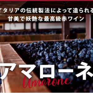 ヴェネット・ワインの研究!あのアマローネがあります!そして盛り沢山で多種多様!