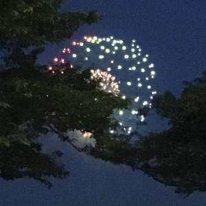 花火を観てきたよ(^_^)
