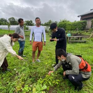 野人、原人、シネコカルチャーの面々 協生農法視察