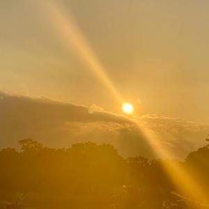 朝の喜び自然との語らい