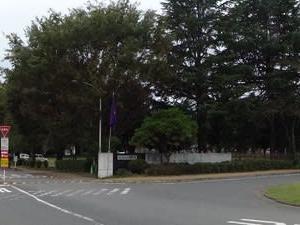 群馬大学・広瀬川~~~~歩き・・・