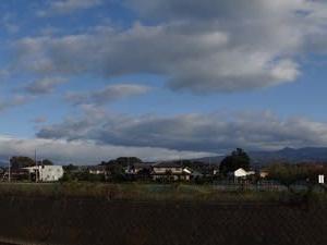 秋の朝は空気が澄んで気分爽快・・・風景、公園、庭~野鳥が・・・