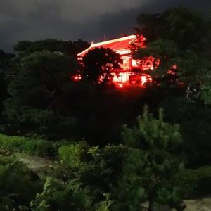 前橋 臨江閣別館のライトアップ・リボンカラーに賛同・・・
