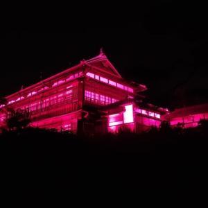 臨江閣・別館~ライトアップの姿・・・優雅な感じ