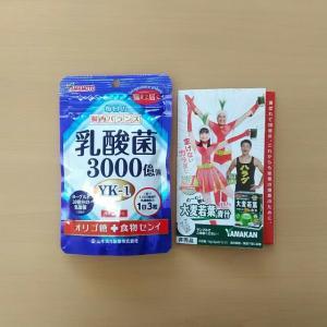 山本漢方製薬で乳酸菌粒
