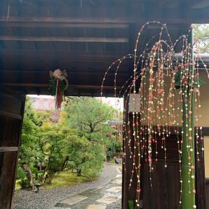 京都南禅寺…桜鶴苑の京懐石ランチ