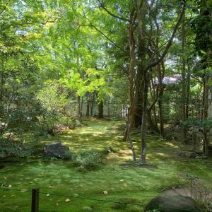 京都市郊外…新緑の蓮華寺さんへ