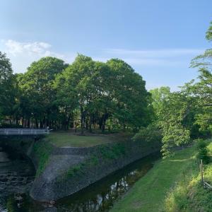 京都国際会館近く…ウォーキングで
