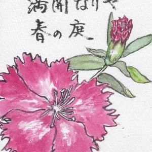 2021年春コレクション⑨『撫子(なでしこ)』