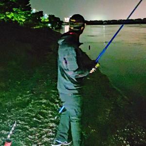 これは釣れているというのでは?
