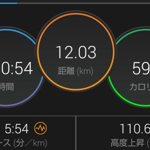 堀切橋マラソン レポ1 ~福澤の呼吸、壱の型~
