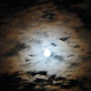 月暈(つきがさ)