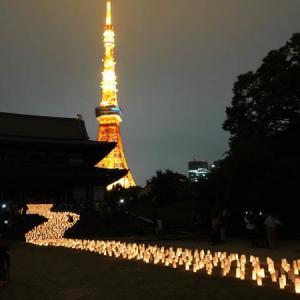 増上寺の七夕祭り