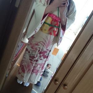 桐紋大好きです