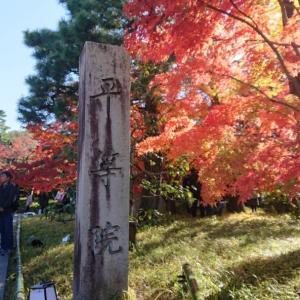 40歳から花開く女のレシピ~圧巻の佇まいに紅葉も素敵でした!~京都宇治 世界遺産 平等院鳳凰堂