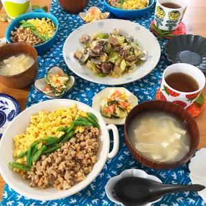 三色丼定食 と かがくのあそび?!