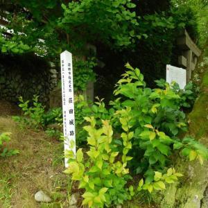 荘田城(群馬県)