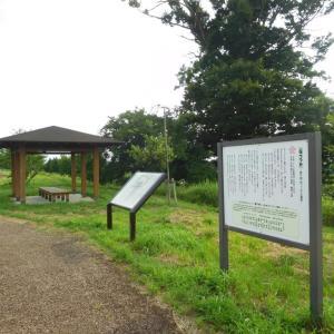 長沼城(長野県)