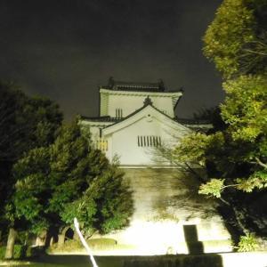 七州城(愛知県)