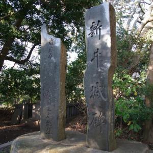 新井城(神奈川県)