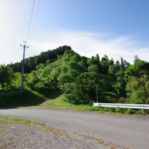 子王山城(群馬県)