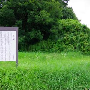 若山城(三重県)