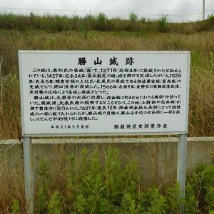 勝山城(群馬県)