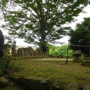 保渡田城(群馬県)