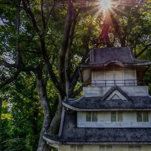 勝山城(新潟県)
