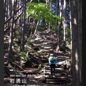 ススキを見に岩湧山へ1