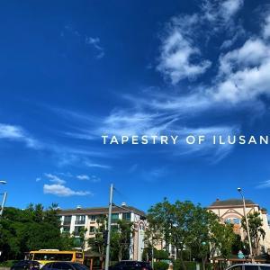 青い空と散歩の記録