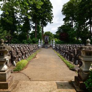 ◆【続】羅漢像と紫陽花のお寺(経王山 光徳寺/市原市)
