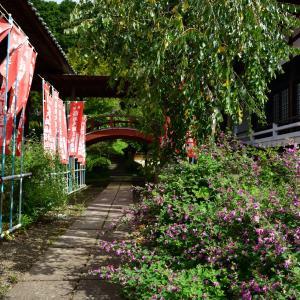 ◆円如寺の「やすらぎ遍路道」(君津市)