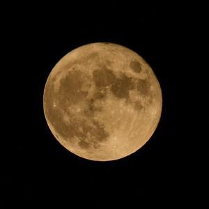 ◆「中秋の名月」が8年ぶりの満月